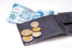 Money of Mexico Stock Photography