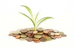 Money montain royalty free stock photography