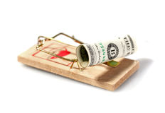 Money on mouse trap Stock Image