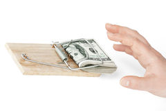 Money in mouse trap Stock Images