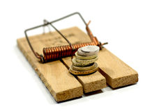 Money on mouse trap Stock Images