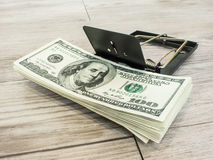Money in a mousetrap Stock Image