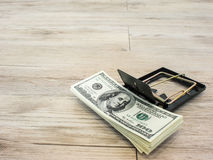 Money in a mousetrap Stock Photos