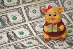 Money must be in good paws. Piggy bank with money from ceramics in the notes on the background of the feet royalty free stock images