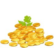 Money nature Royalty Free Stock Photo