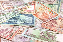 Money from Nepal, various Rupee banknotes Stock Photography