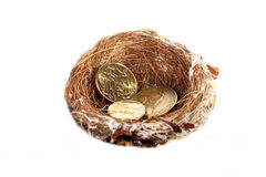 Money in nest Stock Photography