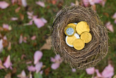 Money Nest Royalty Free Stock Photography