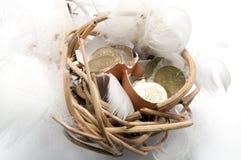Money Nest Egg Royalty Free Stock Images