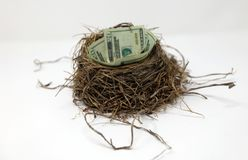 Money nest egg saving for future, investment concept. Build a future stock image