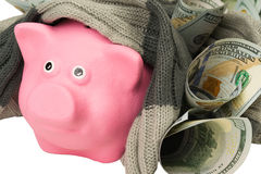 Money next to a pink pig. Pink pig in a warm scarf made of money Stock Photo
