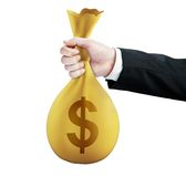 Money pack Royalty Free Stock Photo