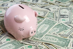 Money Pig Royalty Free Stock Photo