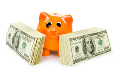 Money with pig Stock Photography