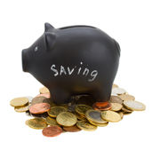 Money pig on cions royalty free stock photos