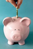 Money in piggy bank. Details of a paper bill being inserted into a pink piggy savings bank.  Blue background Royalty Free Stock Image