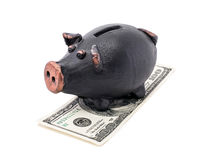 Money and piggy bank Stock Photo