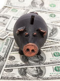 Money and piggy bank Stock Images