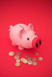 Money in the piggy bank Stock Photo