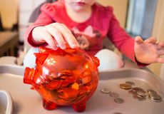 Money in the piggy bank Stock Photography