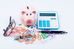 Money and piggy bank Royalty Free Stock Photo