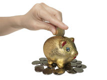Money and piggy bank Royalty Free Stock Photos