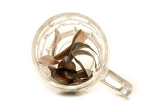 Money in a pint glass Royalty Free Stock Photo