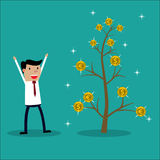 Money Plant. Stock Photo