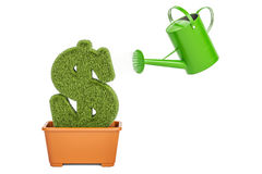 Free Money Plant Concept. Watering Can Water Grassy Dollar Symbol, 3D Stock Images - 95469224