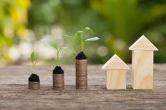 Money and plant, Saving money concept, concept of financial savings to buy a house,trees growing in a sequence of germination on stock image
