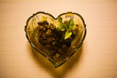MONEY PLANT WITH SOME ROCKS IN A HEART SHAPED GLASS BOWL POT PLACED ON WHITE TILES FLOOR