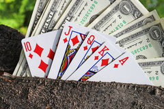 Money and playing cards Royalty Free Stock Photo