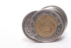 Money 5 PLN Stock Photo