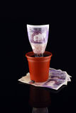 Money Pot on Stack Stock Image