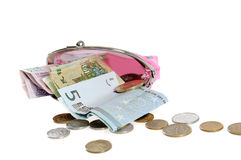 Money with purse. On white background Stock Image