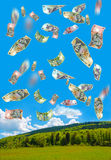 Money rain. A lot of romanian money falling over the woods Royalty Free Stock Photos