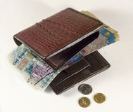 Money. Republic of Kazakhstan are in purse Stock Photography