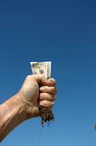 Money and root 2. Hand holding money with roots stock photo