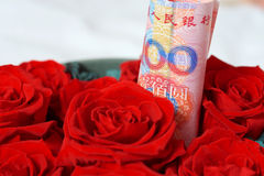 Money and rose Royalty Free Stock Image