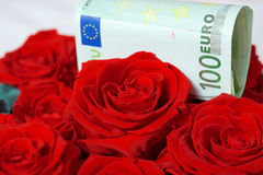 Money and rose Stock Image