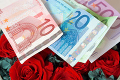 Money and rose Royalty Free Stock Photography