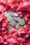 Money and Roses. Coins from different countries most of them are now not being used with a background made of roses Royalty Free Stock Photography