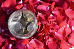 Money and Roses Royalty Free Stock Photography