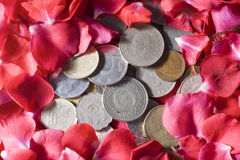 Money and Roses. Coins from different countries most of them are now not being used with a background made of roses Stock Photography