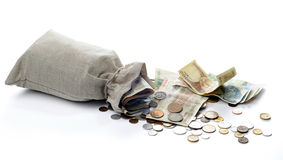 Money sacks and coins. Money sacks, coins and Polish banknotes on a white background stock image