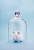 Money safety Stock Photography