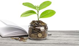 Money saving growth. Concept education financial investment bank banking Royalty Free Stock Image