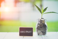 Money saving and investment financial concept. Plant growing in savings coins with text investment on small billboard on wooden stock images