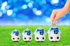 Money Saving with  Piggy bank on grass background Royalty Free Stock Image