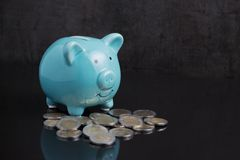 Money savings with blue piggy bank on dark black table with coin. S using as finance or investment concept Royalty Free Stock Images